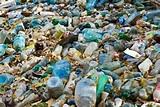 Plastic Proliferation