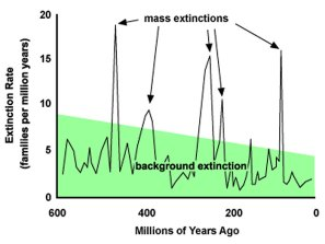 mass_extinctions_Annenberg.Learner