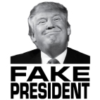 Fake President_image, Northern Sun