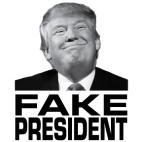 Fake President_image, Northern Sun