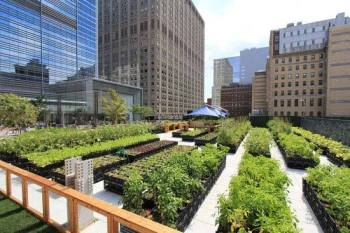 NYC.Riverpark.farm