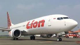 Lion 737 Max_8