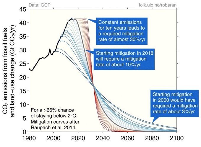 Costs of Delay in reducing Carbon Emissions